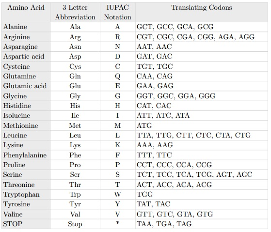 "Amino acids, their representative symbols, and the translating ""codons"" (three consecutive base pairs) that form them."
